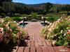 Сады Филоли в Калифорнии. (Filoli Gardens)