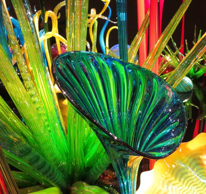Завораживает необыкновенная красота и изящество стеклянных цветов