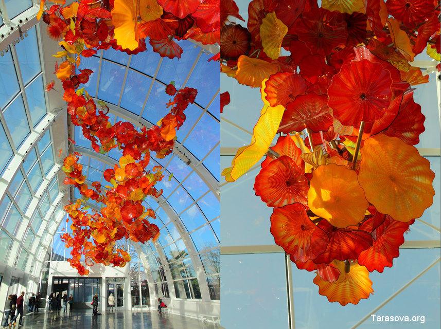 Прекрасные цветы под потолком